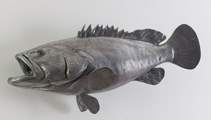 Estuary Cod Fish Wall Sculpture
